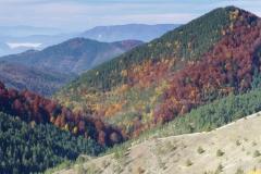 serbian mountains